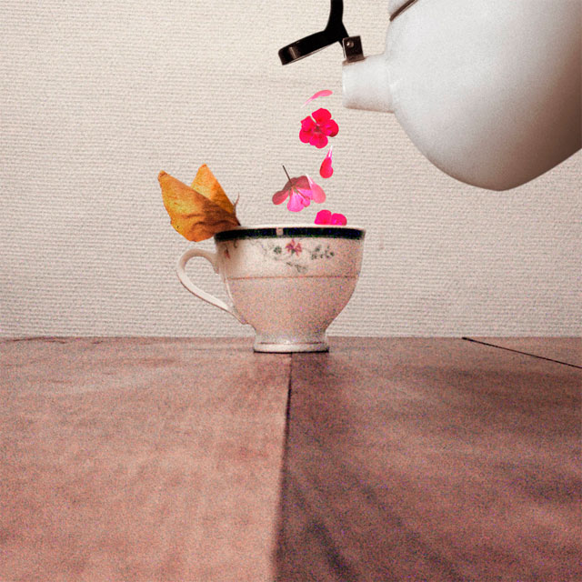 保和养胃茶制作及功效介绍