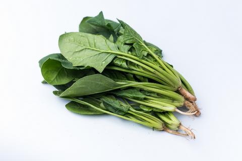 菠菜是什么 吃它对身体有这些好处