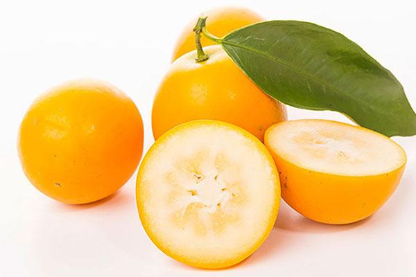 金橘的这些功用你知道吗?