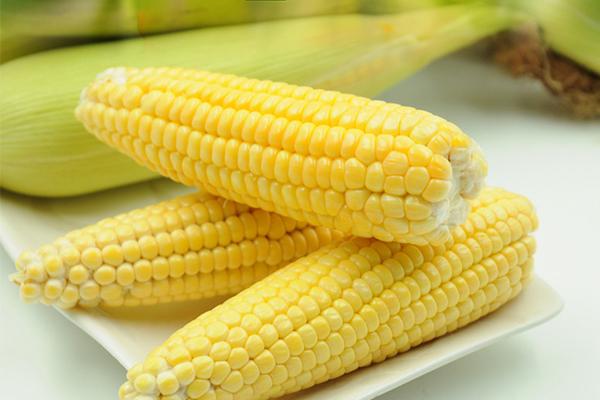 玉米的好处 多吃这种食物对眼睛很好