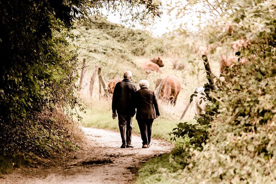 预期寿命延长,如何做好老年生涯规划,不为儿女添负担?